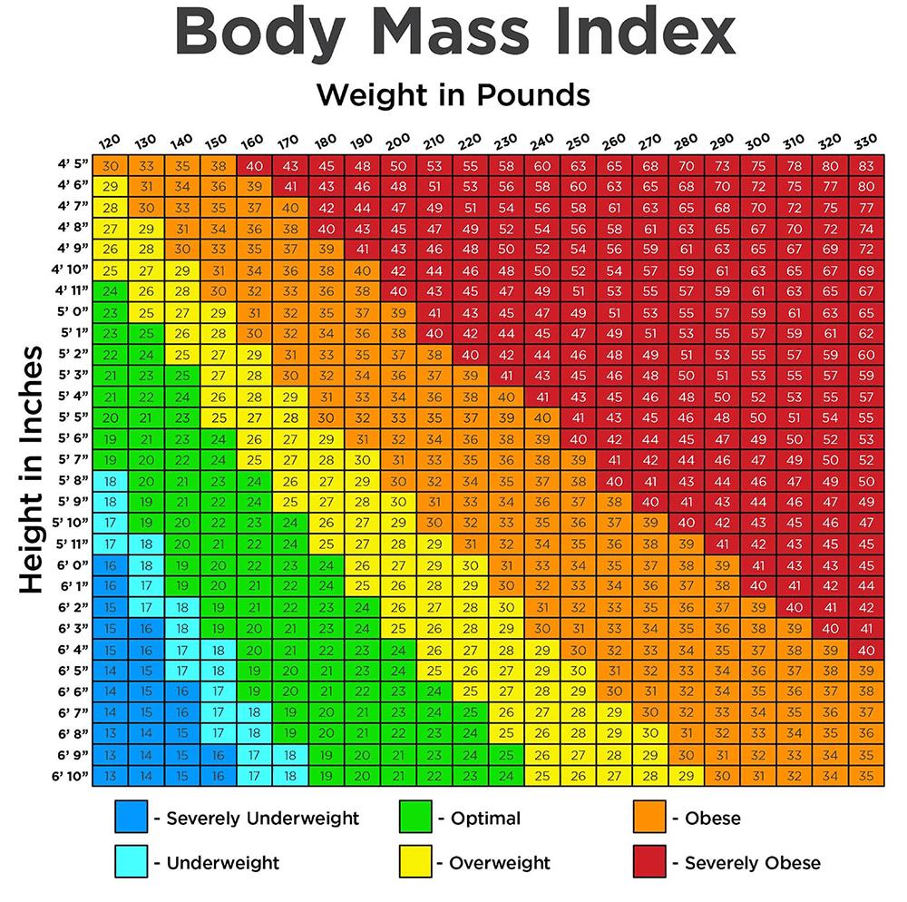 BMI Calculator KG